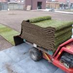 coxruben-aanleg-grasmatten_b
